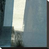 Bluebird I Leinwand von J. McKenzie