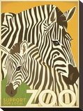 Zoo Zebra Stretched Canvas Print by  Anderson Design Group