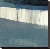 Bluebird II Leinwand von J. McKenzie