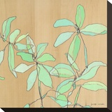 Soft Leaves Stretched Canvas Print by Jennifer Mercede
