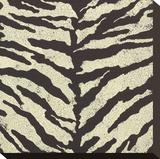 Zebra Skin Stretched Canvas Print by Susan Clickner