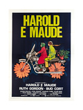 HAROLD AND MAUDE, (aka HAROLD E MAUDE), Italian poster, from left: Ruth Gordon, Bud Cort, 1971 Prints