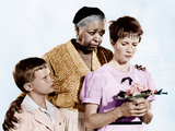 THE MEMBER OF THE WEDDING, from left: Brandon De Wilde, Ethel Waters, Julie Harris, 1952 Photo
