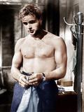 Linje Lusta, Marlon Brando, 1951 Foto