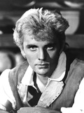 BILLY BUDD, Terence Stamp, 1962 Photo