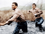 THE DEFIANT ONES, from left: Sidney Poitier, Tony Curtis, 1958 Photo