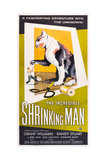 THE INCREDIBLE SHRINKING MAN, US poster art, 1957. Art