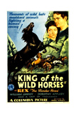 KING OF THE WILD HORSES Posters