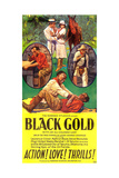 BLACK GOLD, poster art, 1928 Art