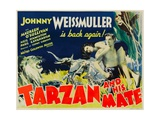 TARZAN AND HIS MATE, from left: Maureen O'Sullivan, Johnny Weissmuller, 1934. Print