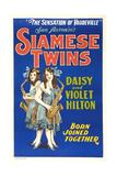 Daisy and Violet Hilton, 1920 - Sanat