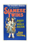 Daisy and Violet Hilton, 1920 Print