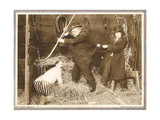 HIS HIDDEN PUPOSE, left: Chester Conklin on lobbycard, 1918 Prints