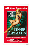 PIN-UP PLAYMATES, (aka VACATION TEMPTATIONS), US poster, Janie Meyers, 1972 Posters