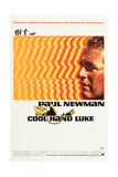 COOL HAND LUKE, Paul Newman, 1967. Posters