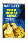 WILD HORSE MESA, from left: Sally Blane, Randolph Scott, 1932. Posters