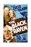 THE BLACK RAVEN, US poster, bottom left: George Zucco, top left: Noel Madison, Wanda McKay, 1943 Posters