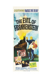 EVIL OF FRANKENSTEIN Posters