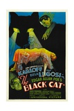THE BLACK CAT, Boris Karloff, Harry Cording, Jacqueline Wells [Julie Bishop], Bela Lugosi, 1934 Art