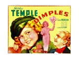 DIMPLES Posters