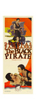 THE BLACK PIRATE Posters