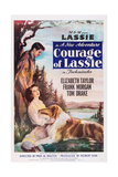 COURAGE OF LASSIE, US poster, from top right: Tom Drake, Elizabeth Taylor, Lassie, 1946 Prints