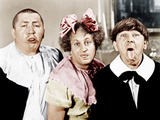 ALL THE WORLD'S A STOOGE, from left: Curly Howard, Larry Fine, Moe Howard, 1941 Prints