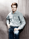 Warren Beatty, ca. 1964 Photo