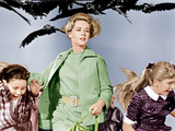 THE BIRDS, Tippi Hedren (center), 1963 Plakaty