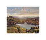 Vineyard View I Giclee Print by Jennie Tomao-Bragg