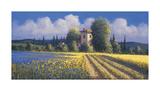 Summer Fields II Giclee Print by David Short