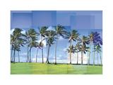 Kauai Giclee Print by Pep Ventosa