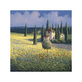 Tuscan Poppies I Giclee Print by David Short