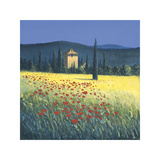 Tuscan Poppies II Giclee Print by David Short