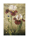 Grand Irises Giclee Print by Fangyu Meng