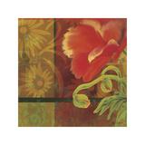 Kaleidoscope I Giclee Print by Tandi Venter