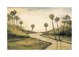 Palmetto Cove Giclee Print by Mark Pulliam
