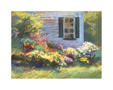 Backlit Mums Giclee Print by Christine Debrosky