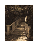Garden Staircase Giclee Print by Alicia Soave