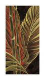 Makatea Leaves I Giclee Print by Yvette St. Amant