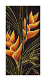 Heliconia Giclee Print by Yvette St. Amant