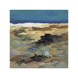 White Sands Giclee Print by Pere Camps