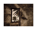 Palm View II Giclee Print by C. J. Groth