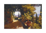 Lemon Tree Verona Giclee Print by Philip Craig