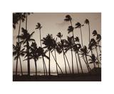 Platinum Palms I Giclee Print by Michael Neubauer