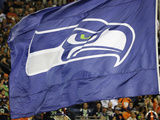 Seattle Seahawks Football Photo by Elaine Thompson
