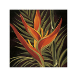 Birds of Paradise I Giclee Print by Yvette St. Amant
