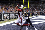 Cardinals Football: Larry Fitzgerald Photo by L.G. Patterson