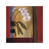 Orchid Lines I Giclee Print by Don Li-Leger