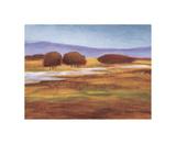 Valley Lake Giclee Print by Lynn Welker
